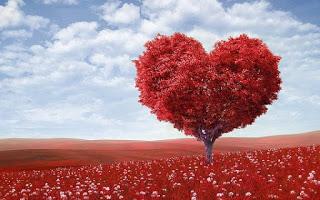 Sortilegio d'Amore 2